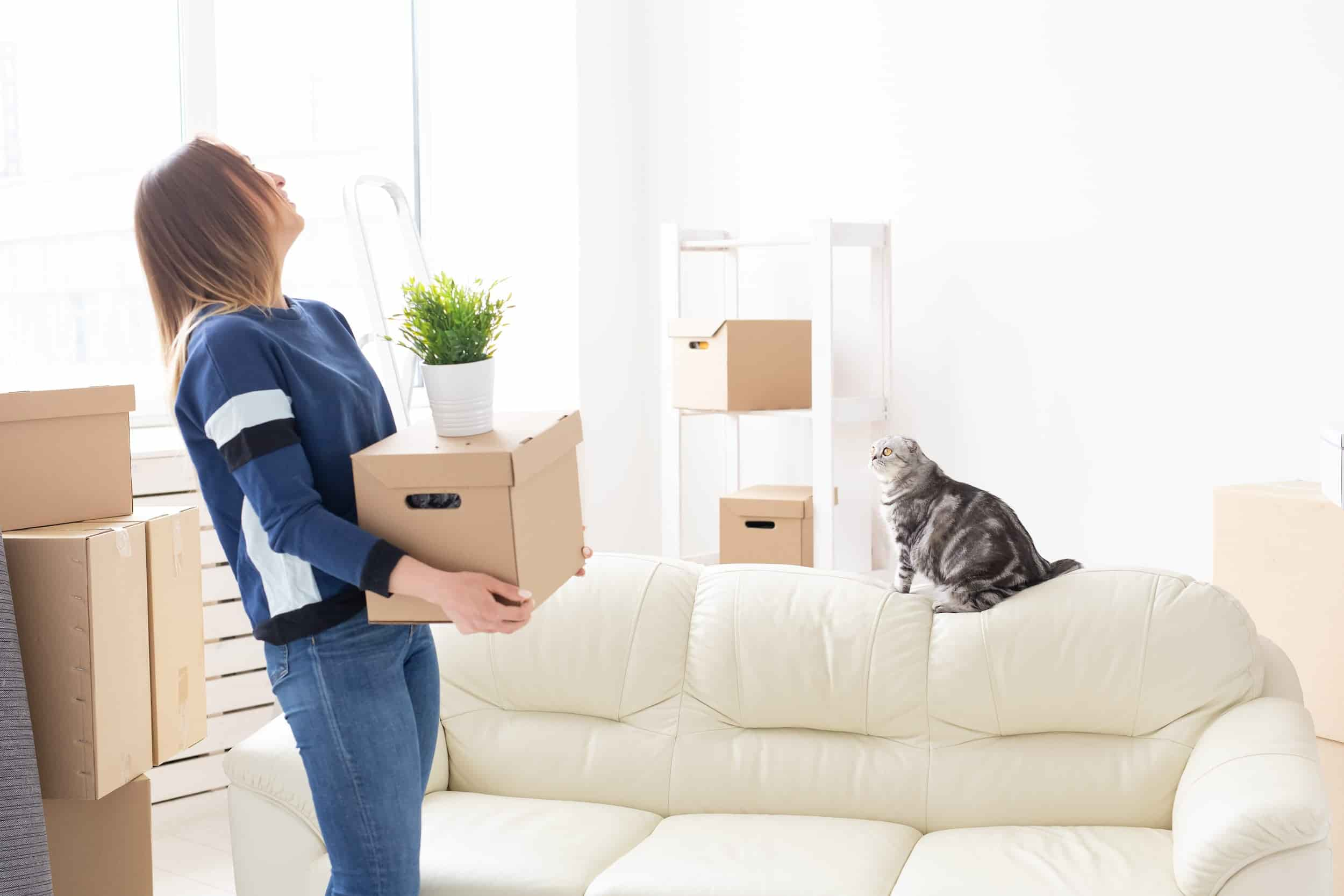 moving company Pros and Cons of Moving Yourself vs. Hiring a Moving Company in NYC